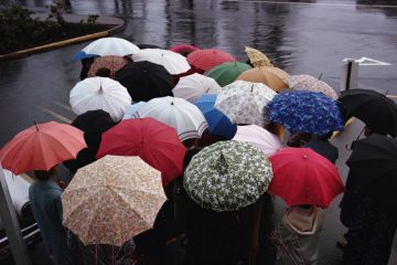 Group-of-Umbrellas