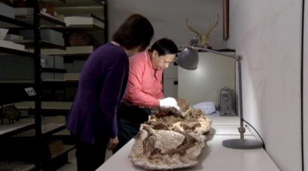 apolithoma 4800 xronia mitera