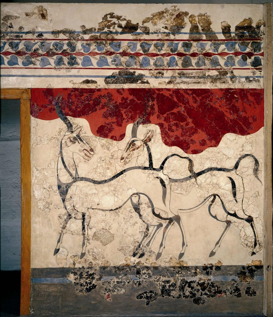Akrotiri Anaskafi 11