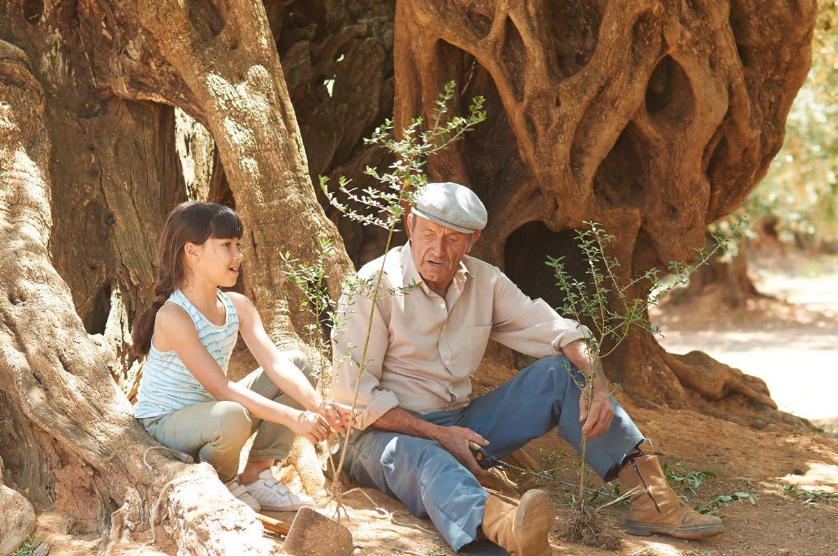 El olivo movie
