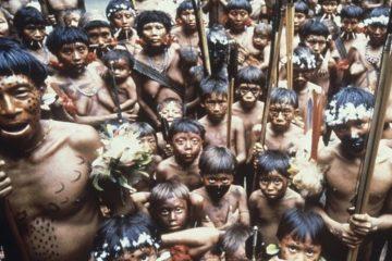 φυλή ιθαγενών
